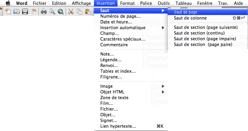 word saut de pages